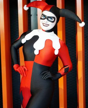 Harley Quinn (Animated Series)